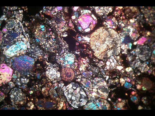Thin section Parnallee