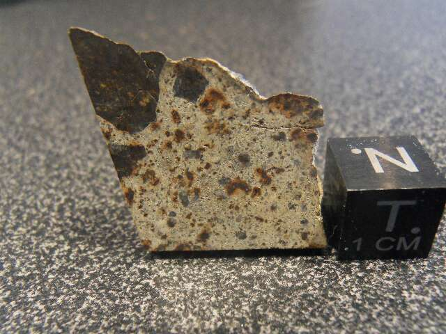 Météorite NWA 6080 LL4 tranche de 6,3 grammes dans meteorites NWA-6080-LL4-inclusion-63-grs