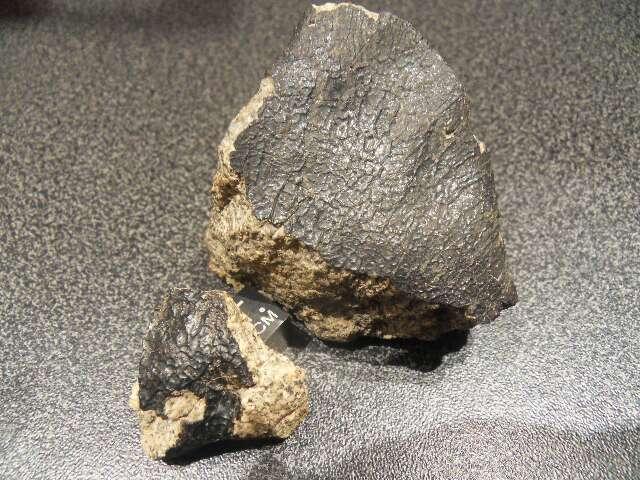 Météorite NWA xxx probable eucrite mmict de 130 et 10 grs dans meteorites Eucrite-fragment-de-130-et-109-grs