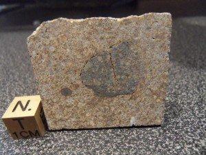 Météorite NWA 7075 L3 de 15,2 grammes dans meteorites nwa-7075-l3-300x225